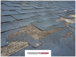 Damaging Debris: The 3 Worst Culprits for Your Roof